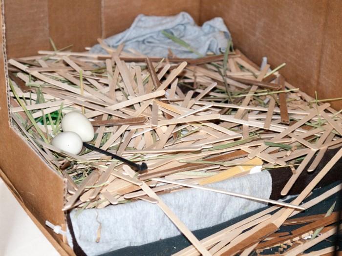 Pigeon nesting box