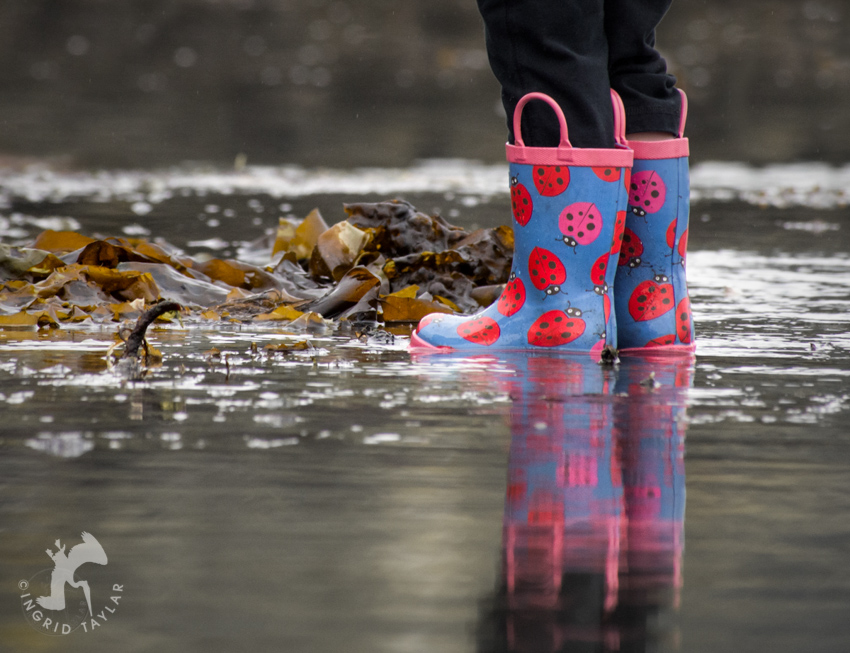 Children's Mucking boots at low tide