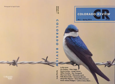 Colorado Review Cover by Ingrid Taylar