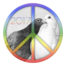 Pigeons inside peace sign symbol