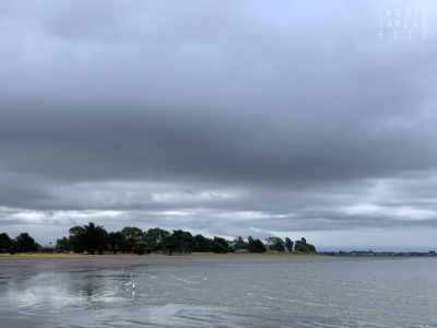 Alameda Low Tide