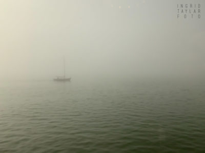 Berkeley Marina Fog and Boat