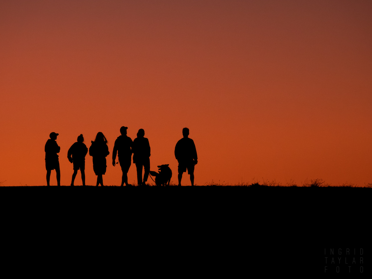 Sunset Silhouettes