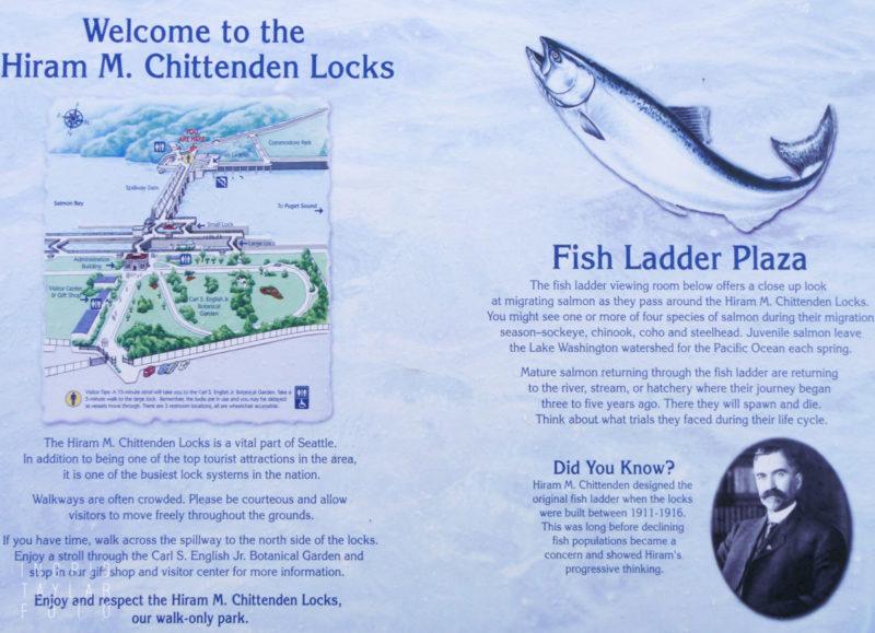 Ballard Locks Fish Ladder Sign