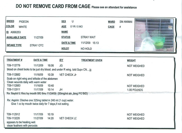 Clive Cage Card