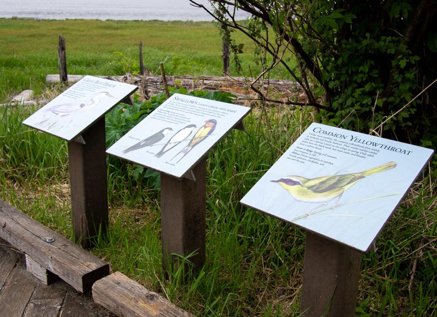Grays Harbor Interpretive Signs