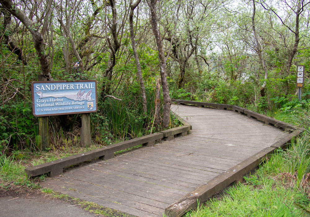 Grays Harbor Sandpiper Trail