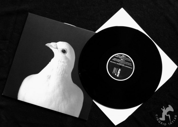 White Pigeon on Fleeth Record Album