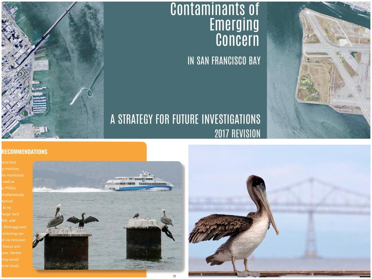 Contaminants of Emerging Concern