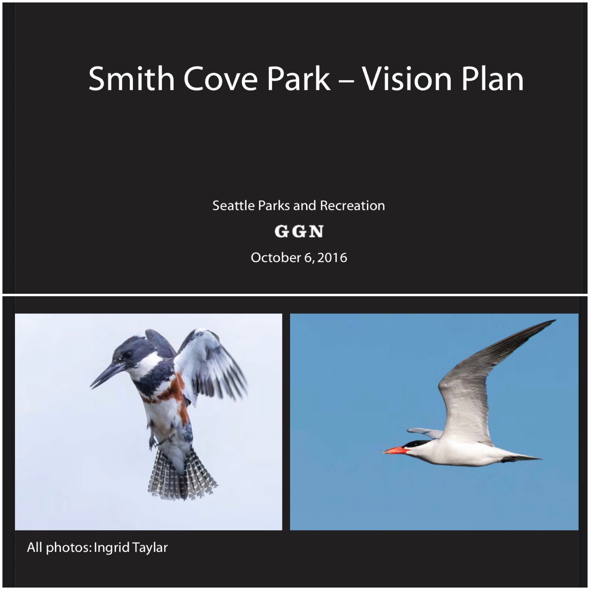 Smith Cove Park Vision Plan