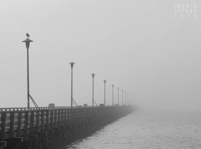 Berkeley Pier in B+W