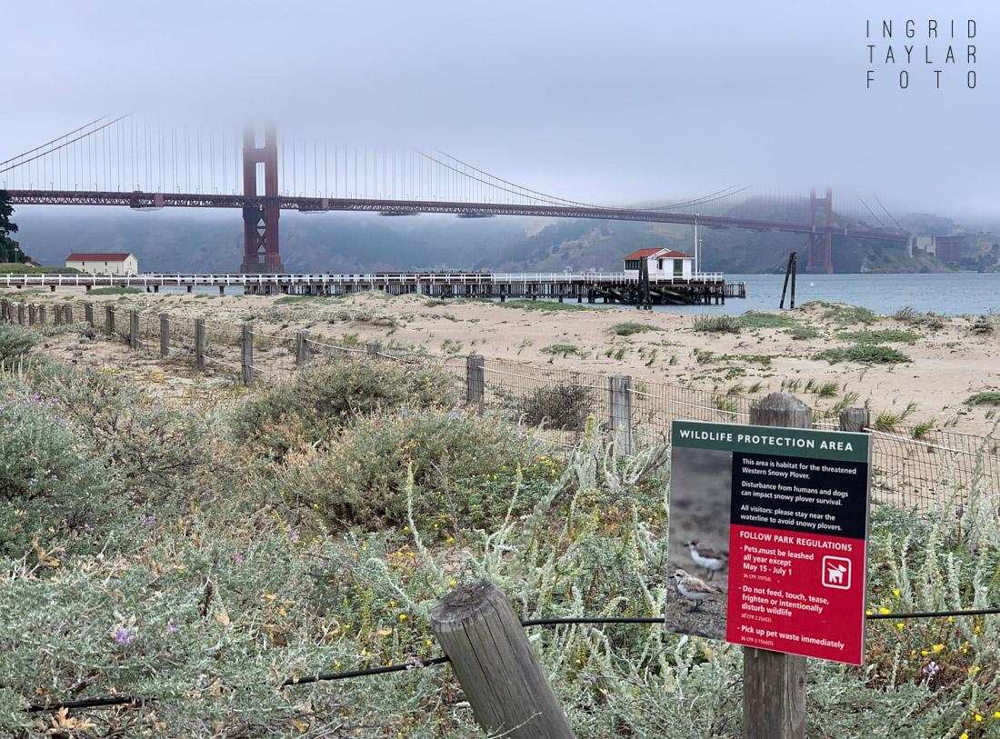 Crissy Field Fog at the Golden Gate Bridge