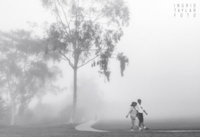A Stroll in the Fog
