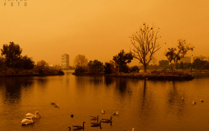 Lake Merritt in Orange Wildfire Smoke