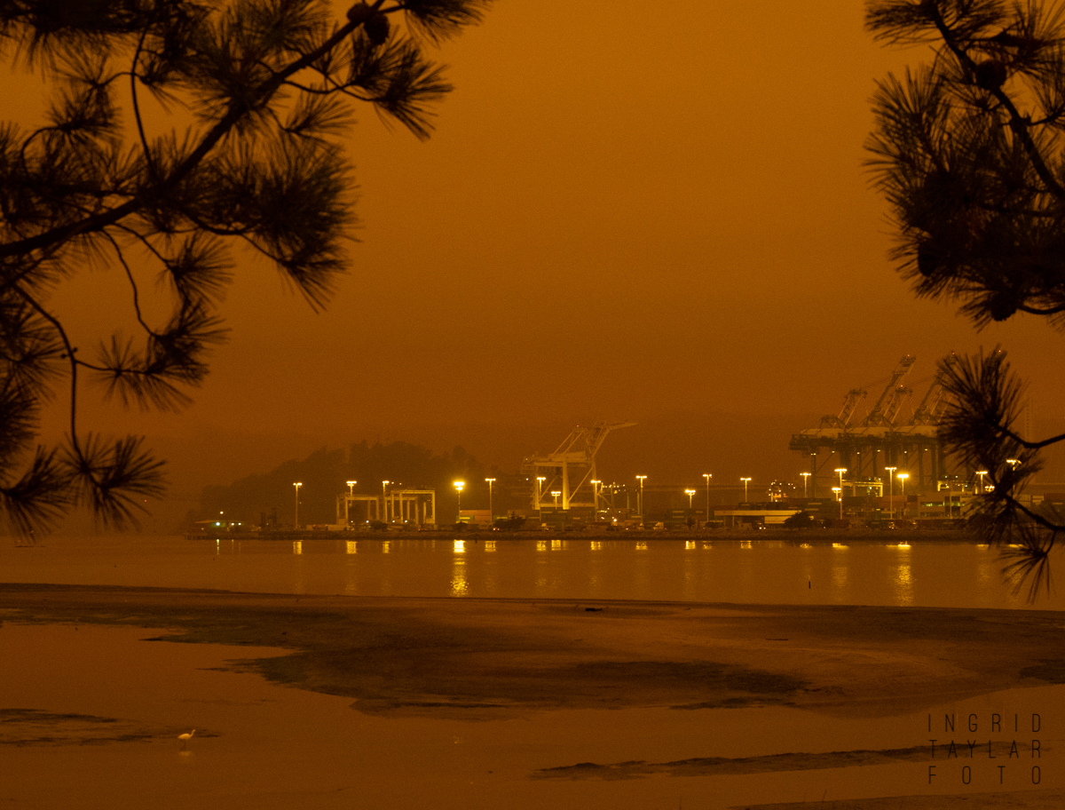 Port of Oakland Cranes in Orange Wildfire Smoke