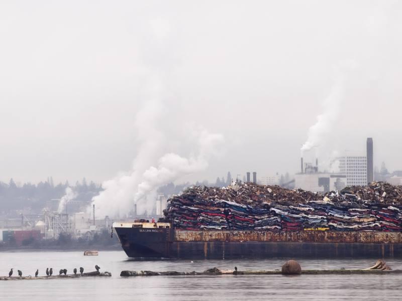 Cormorants and Port of Tacoma